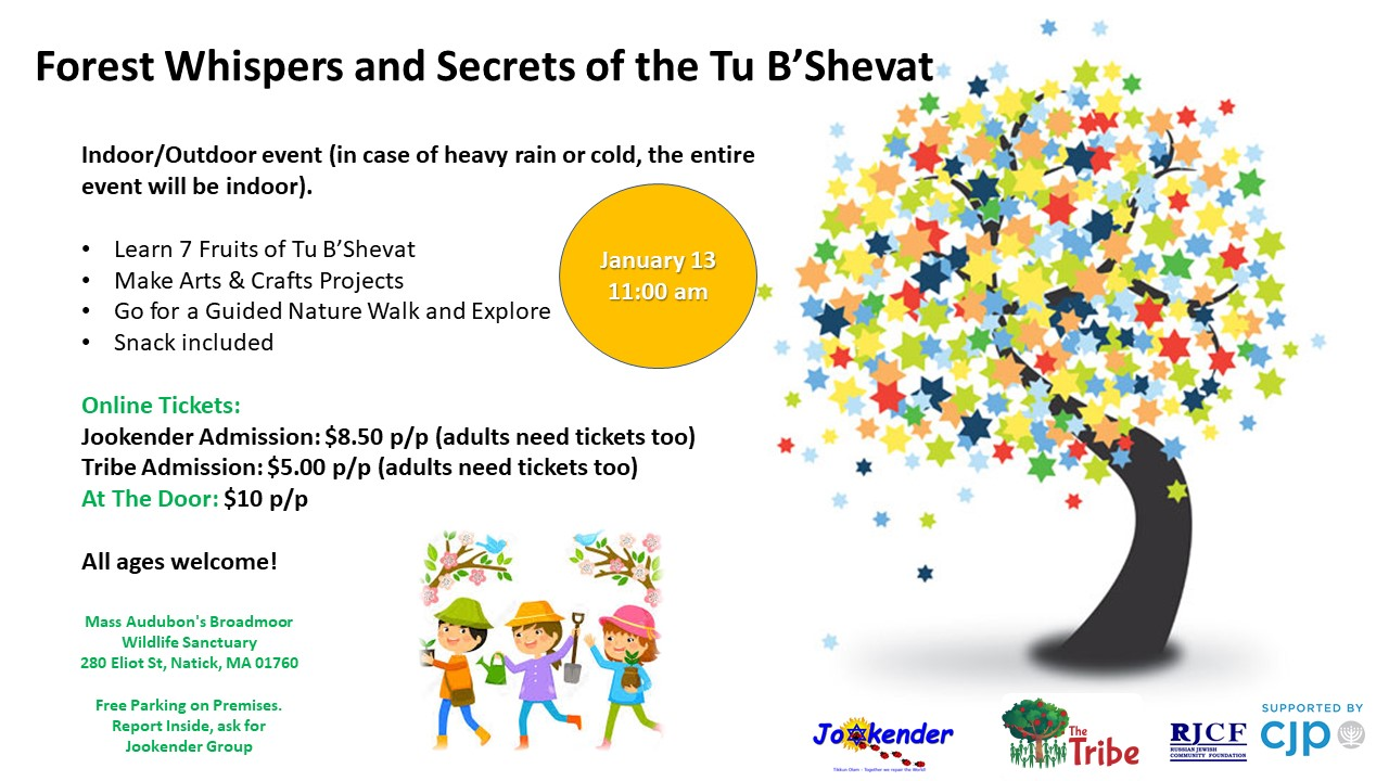 Forest Whispers and Secrets of the Tu B`Shevat