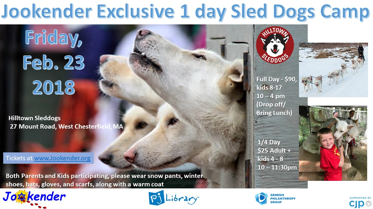 1 Day Sled Dogs Camp