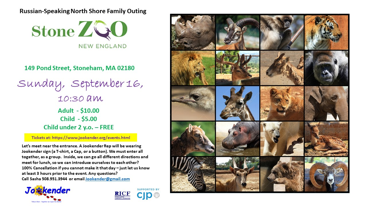 Stone ZOO: North Shore Family Outing